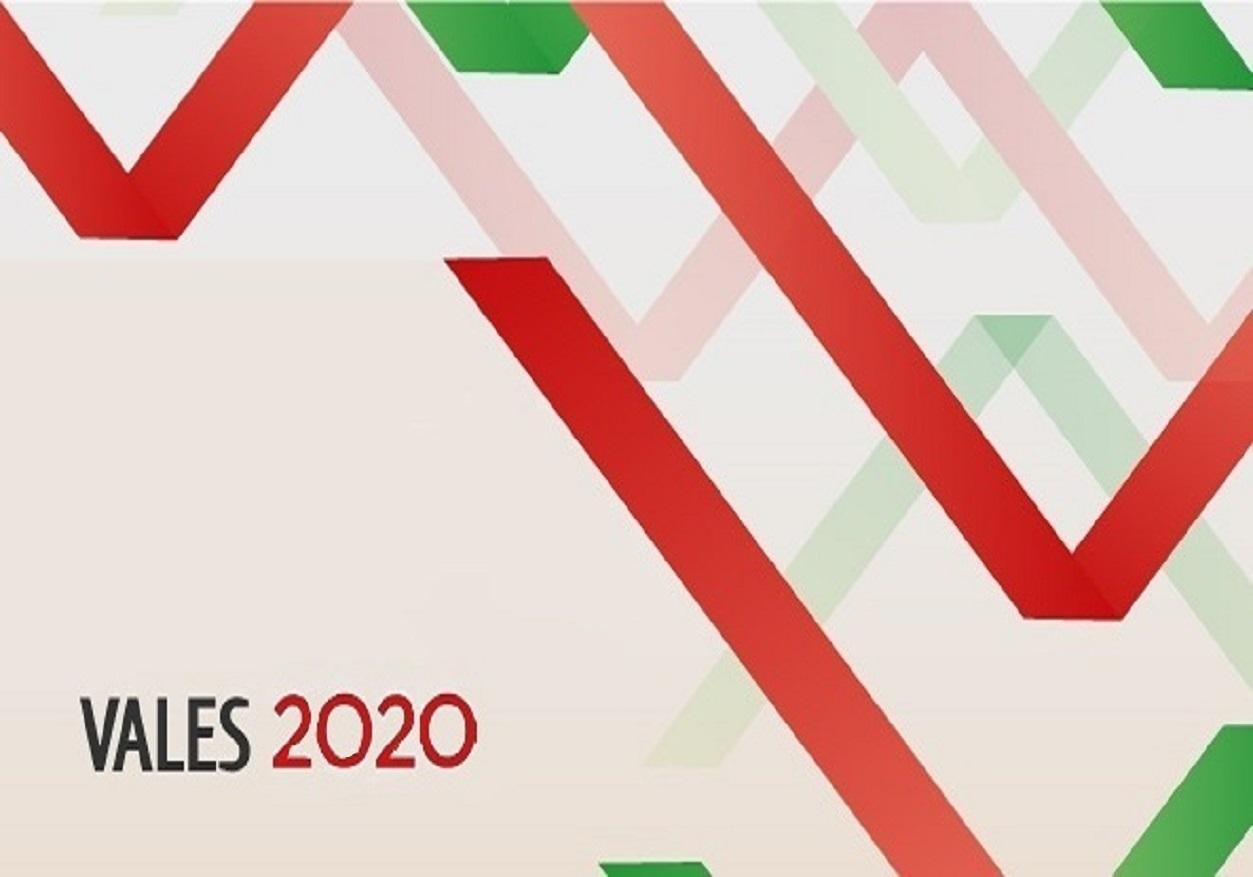 Programa Vales 2020